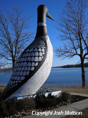 Picture of World's Largest Loon